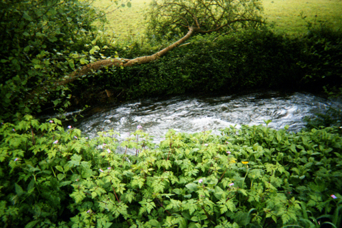 o río Torto